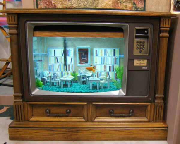 FishTV_aquarium furniture